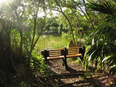 Northside Pond