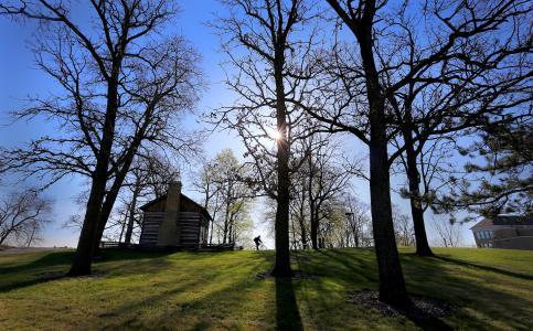 Arboretum spring trees