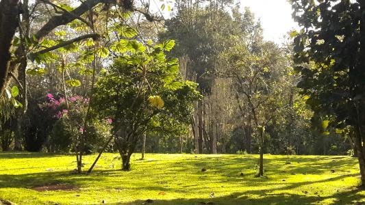 Jardin Botanico Francisco