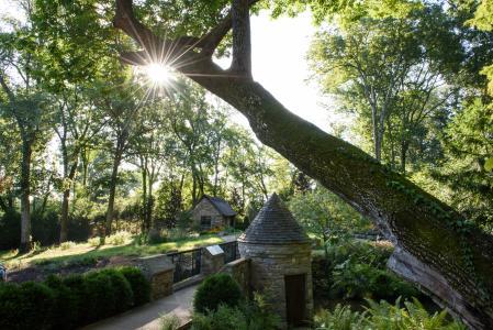 Cheekwood Arboretum