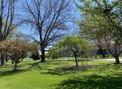 Bethalto Arboretum