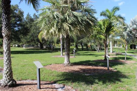 Monty Andrews Arboretum