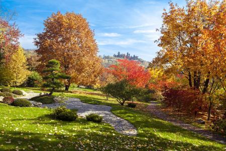 Japanese Garden - Prague Botanical Garden