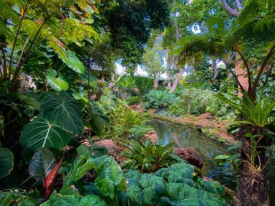 Four Seasons Resort Lanai grounds