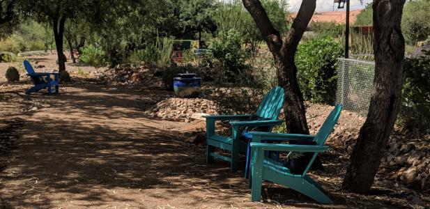Desert Meadows Park