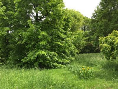 Arboretum de Paris