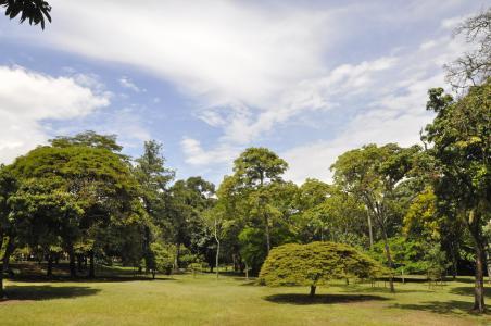 Botanic Garden Medellin