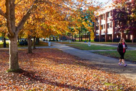 University of Arkansas Fort Smith campus trees