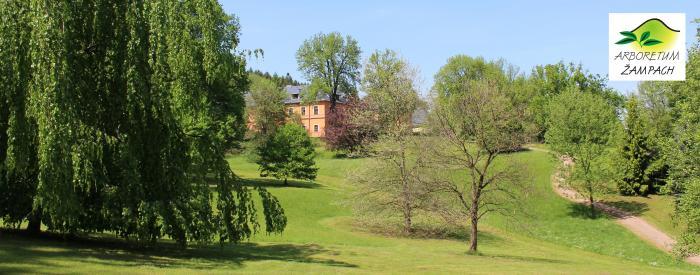 Arboretum Zampach