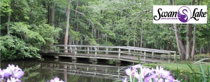 Swan Lake Arboretum