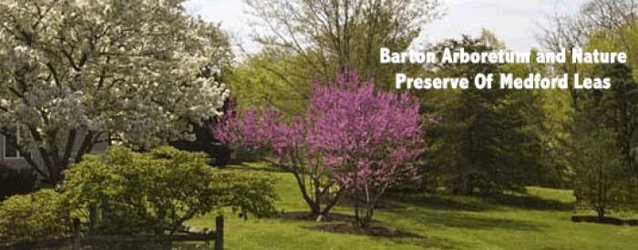 Barton Arboretum