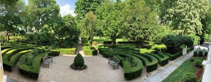 Arboretum at Liberty Hall hedges