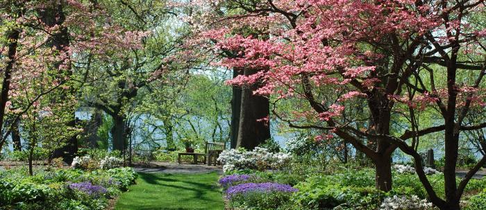 Green Walk spring
