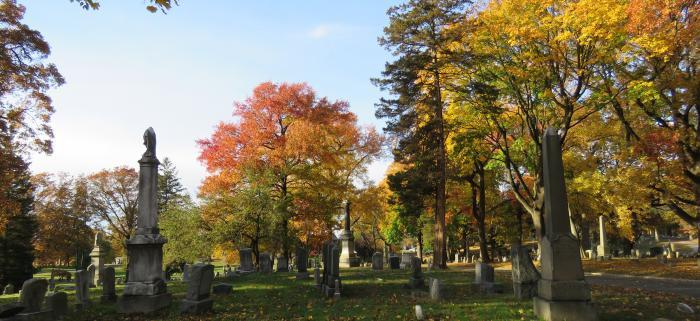 The Evergreens Arboretum