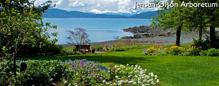 Jensen-Olson Arboretum
