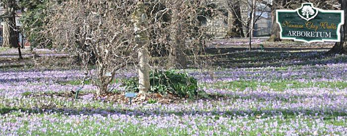 Nannine Clay Wallis Arboretum