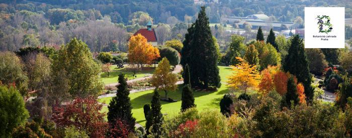 Prague Botanical Garden - Ornamental garden