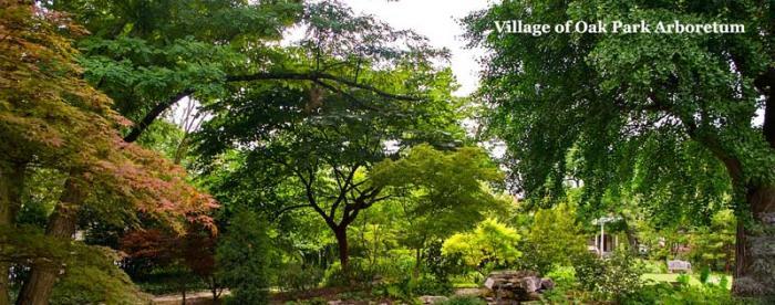 Village of Oak Park