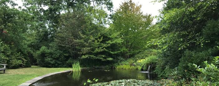 Weetamoe Arboretum