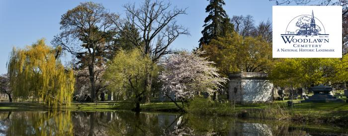 Woodlawn Cemetery Spring trees
