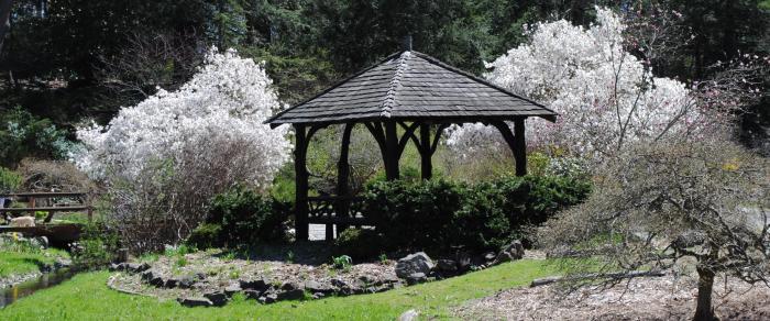 Laurelwood Arboretum