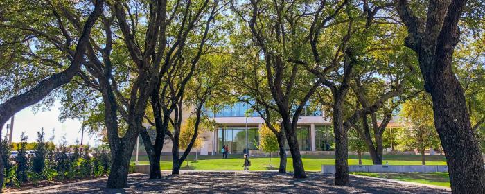 UT Dallas Arboretum