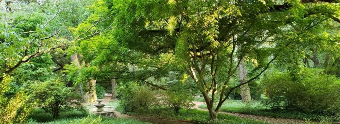 Aiken City Arboretum