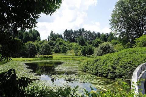 Cornell Plantations