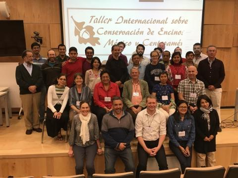 Members of the Oaks of the Americas Conservation Network at an international oak conservation workshop in Morelia, Mexico. March, 2016