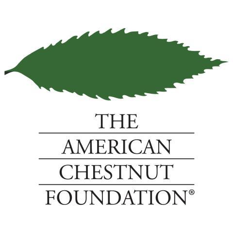 The American Chestnut Foundation