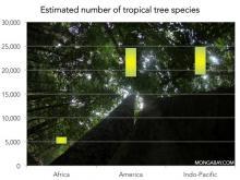 Estimated number of tree species