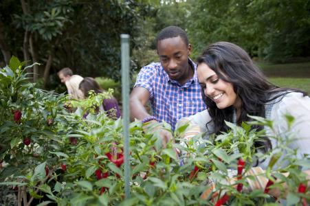 U of Alabama Arboretum students