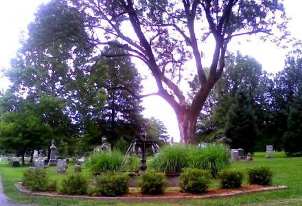 Mt. Washington Cemetery and Arboretum
