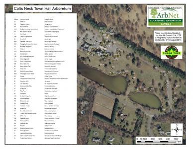 Colts Neck Town Arboretum