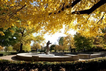 Elmhurst College Arboretum