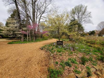 Huntsville Botanical Garden Nature Trail