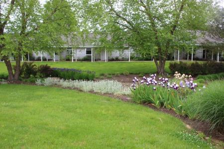 Collington Arboretum trees
