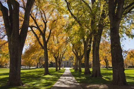 Colorado State University Campus Arboretum - Fall