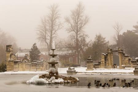 Tower Grove Park winter