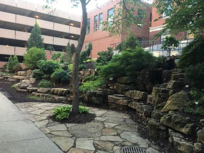 University of Iowa garden