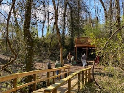 Dogwood Trail