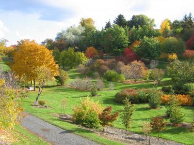 University of Idaho Arboretum