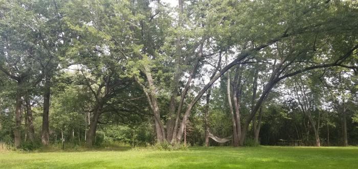 Kuechmann Arboretum