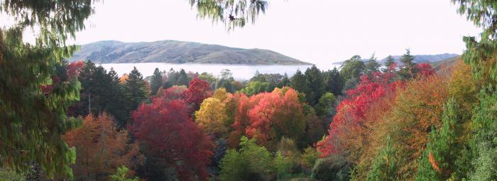 Autumn lookout