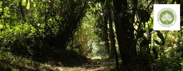 Brackenhurst Botanical Garden