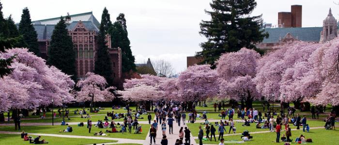 University of Washington campus arboretum