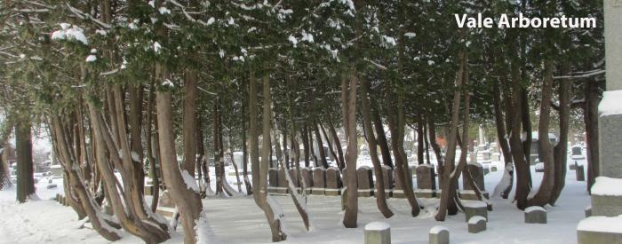 Vale Arboretum Family plot
