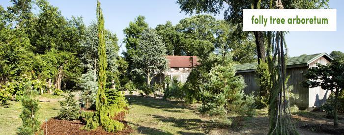 Folly Tree Arboretum