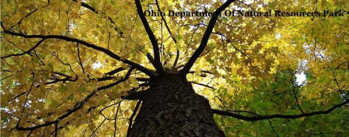 Ohio Department of Natural Resources Park