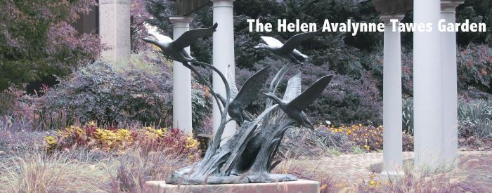 The Helen Avalynne Tawes Garden